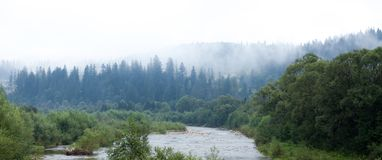 Bos nette atmosfeer, mist in lucht De helling van de de herfstsfeer stock foto's