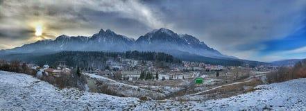 Bos in Roemenië stock foto