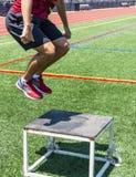 Bos skacze outdoors zdjęcia stock