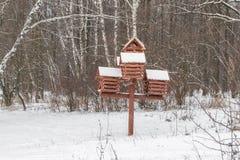 Bos Sneeuwende de winterachtergrond van de de winterberk Rode het nestelen doos Royalty-vrije Stock Afbeelding