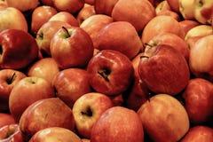 Bos van appelen stock foto's