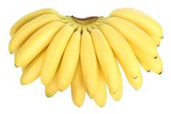 Bos van bananen stock foto