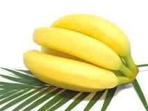 Bos van bananen die op witte achtergrond worden geïsoleerde Stock Foto's