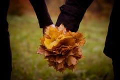 Bos van bladeren Royalty-vrije Stock Foto's