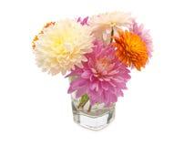 Bos van bloemen Royalty-vrije Stock Foto's