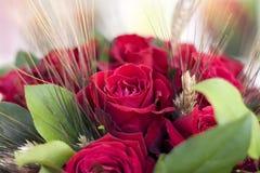 Bos van bloemen, Stock Afbeelding