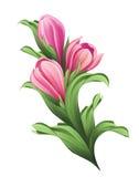 Bos van bloemen, roze tulpenknoppen en groene bladerenillustratie Royalty-vrije Stock Afbeelding