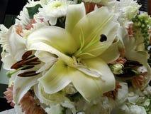 Bos van bloemen in tuin /decoration Stock Afbeeldingen