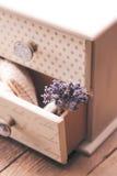 Bos van droge lavendel stock afbeelding
