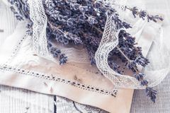 Bos van droge lavendel Stock Foto's
