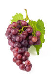 Bos van druiven Royalty-vrije Stock Afbeelding