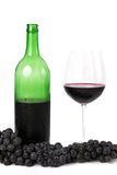 Bos van druiven, fles wijn en wijnglas Stock Foto