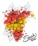 Bos van druiven - het symbool van Spanje Stock Fotografie