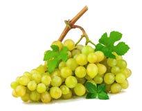Bos van druiven met groene bladeren royalty-vrije stock foto's