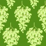 Bos van druiven op een achtergrond Een buitensporig patroon Geschikt als behang in de keuken en achtergrond voor gift het verpakk vector illustratie
