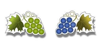 Bos van druiven op wit etiket Stock Fotografie