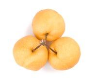 Bos van geïsoleerd Aziatisch-perenfruit met stam Royalty-vrije Stock Foto