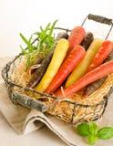 Bos van gekleurde verse wortelen royalty-vrije stock foto's