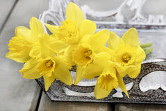 Bos van gele narcissen op sjofel elegant houten dienblad Stock Foto
