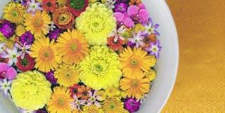 Bos van gele, roze en purpere bloemen stock fotografie