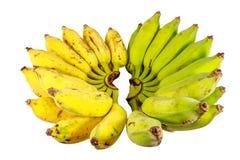 Bos van groene bananen op witte achtergrond Royalty-vrije Stock Afbeeldingen
