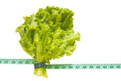 Bos van groene die sla met een centimeter op bac wordt gebonden Royalty-vrije Stock Fotografie