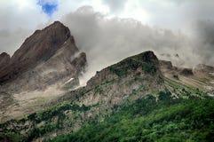 Bos van hoge mountaine in het Nationale Park van Ordesa in Spanje Royalty-vrije Stock Afbeelding