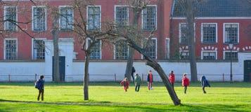 Bos van kinderen die voetbal in een tuin spelen Stock Foto's