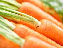 Bos van knapperige wortelenclose-up Royalty-vrije Stock Afbeeldingen