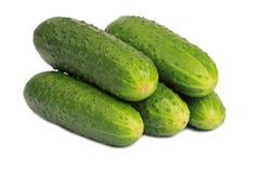 Bos van komkommers Royalty-vrije Stock Afbeelding