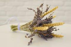 Bos van lavendel op witte achtergrond stock fotografie