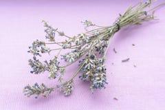 Bos van lavendelbloemen Stock Afbeeldingen