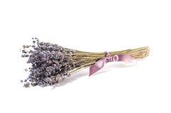 Bos van lavendelbloemen op een witte achtergrond Royalty-vrije Stock Fotografie