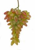Bos van mooie groene en rode druiven stock afbeelding