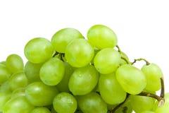 Bos van natte groene druiven over wit Stock Foto's