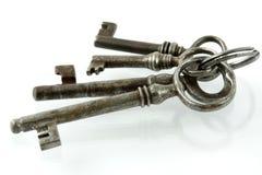 Bos van oude sleutels Stock Afbeeldingen