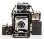 Bos van oude uitstekende filmcamera's Royalty-vrije Stock Afbeeldingen