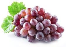 Bos van purpere druiven op het wit Royalty-vrije Stock Afbeeldingen