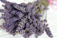 Bos van purpere lavendeltakjes met bloemenclose-up stock fotografie