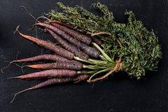 Bos van purpere wortel royalty-vrije stock afbeelding
