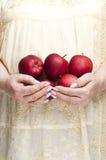 Bos van rode appelen royalty-vrije stock fotografie