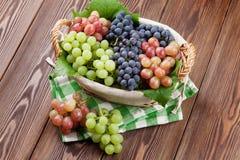 Bos van rode, purpere en witte druiven in mand Stock Afbeeldingen