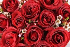 Bos van rode rozen Stock Foto
