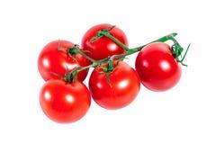 Bos van rode tomaten Stock Afbeeldingen