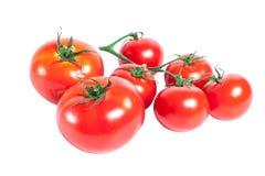 Bos van rode tomaten Stock Foto's