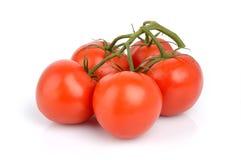 Bos van rode tomaten op wit Royalty-vrije Stock Foto