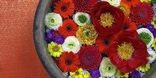 Bos van rode, witte, oranje en purpere bloemen royalty-vrije stock fotografie