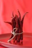 Bos van roodgloeiende Spaanse peperspeper Royalty-vrije Stock Foto's