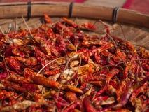 Bos van roodgloeiende Spaanse peperspeper Stock Foto's