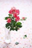 Bos van roze rozen Stock Foto's